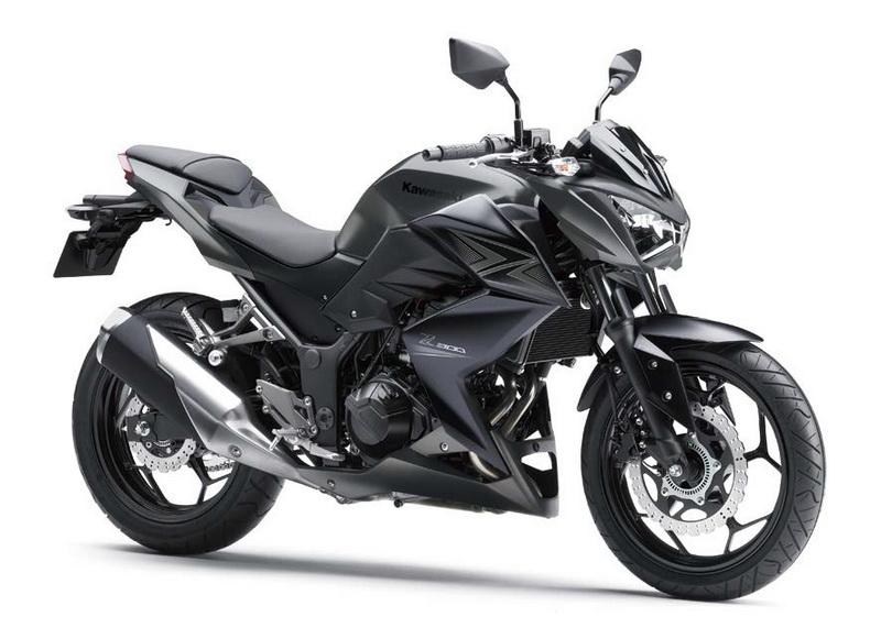 Kawasaki Z 300 (9)_resize